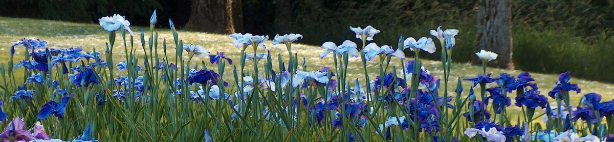 Greater Portland Iris Society